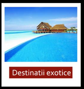 exotice
